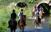 Go For The Equestrian Holidays In Ireland Right Away